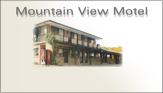 The Mountain View Hotel In Hamilton Ontario Canada