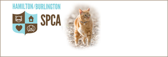 SPCA Hamilton & Burlington Society for the Prevention of Cruelty to Animals